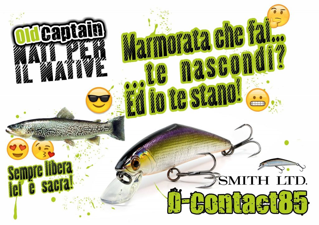 Smith D-Contact banner