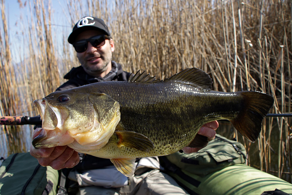 SMITH KOZ EX-C65LH : La canna per il big bass in belly boat.dany
