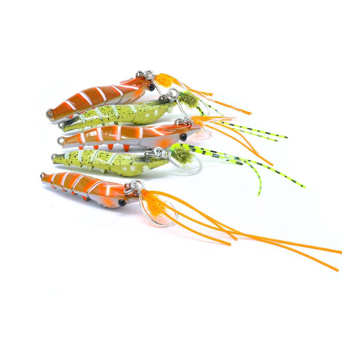 Il Candy Shrimp in FreshWater 2