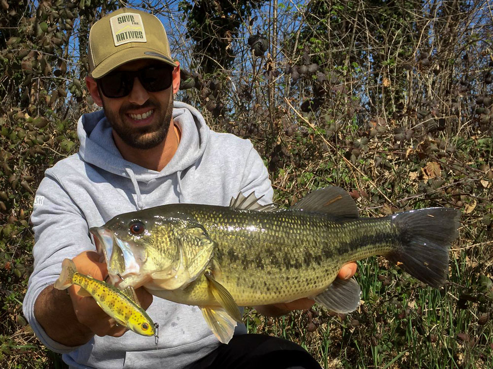 SWIMBAIT IN CAVA : LIVETARGET PARR TROUT 3