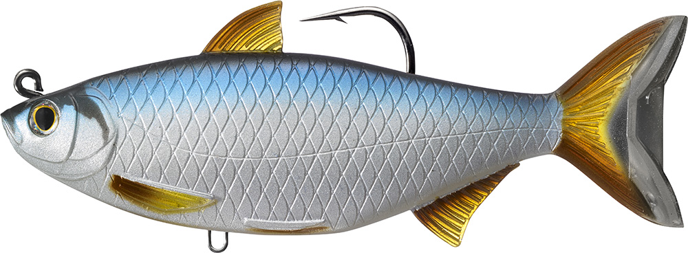 Livetarget Golden Shiner 701