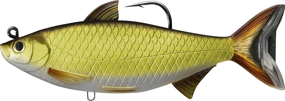 Livetarget Golden Shiner 704