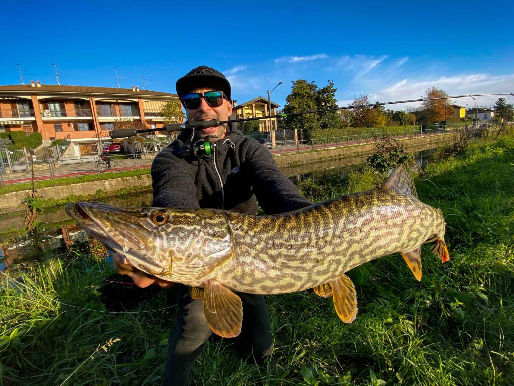 La canna da spinning perfetta per lo Street Fishing pike